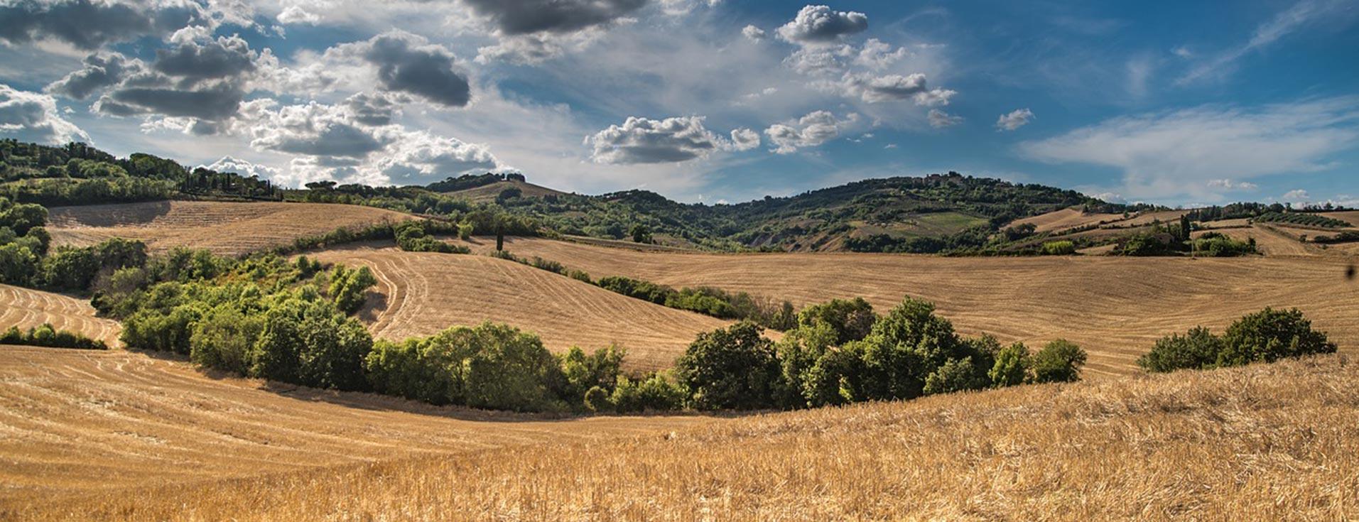 Franciacorta Hills&Wine